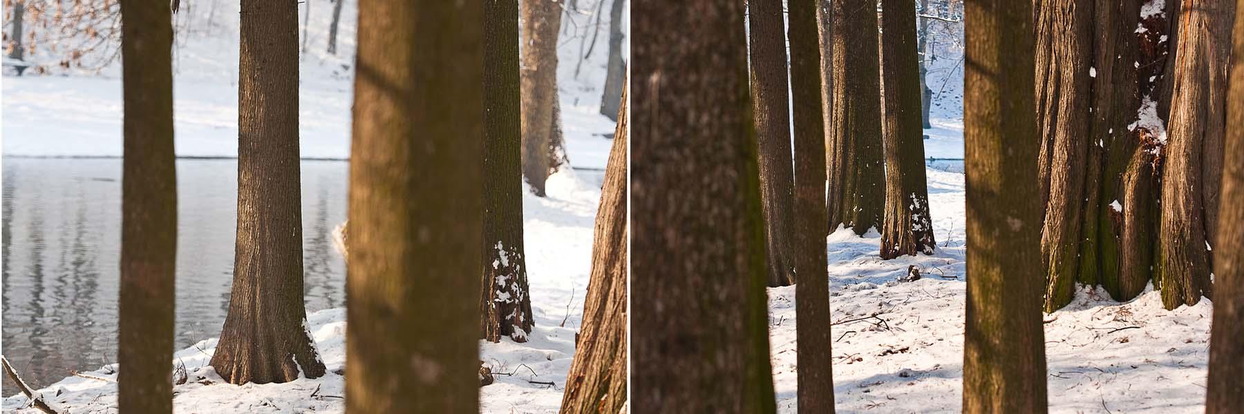 Winter_Slider